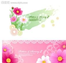时尚花朵图片