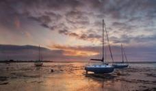 滩涂上的帆船图片
