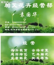 植物名片图片