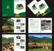 农业 画册图片