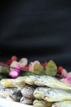 黄花鱼图片