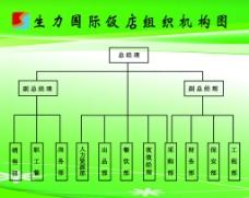 组织机构图图片