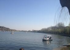 初春湖面图片