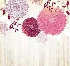 手绘花朵 花卡图片