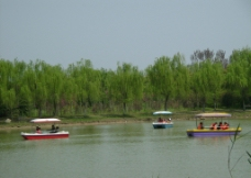 滨湖水岸图片