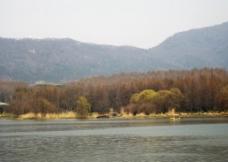 前湖初春图片