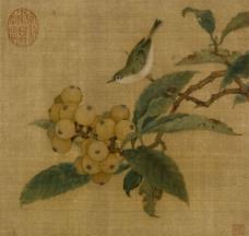 宋 林椿 枇杷山鸟图图片
