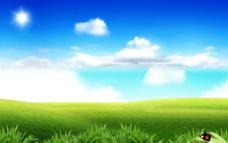 草地 蓝天图片
