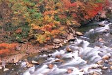 自然 山水 河流图片