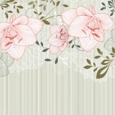 手绘花卉背景矢量图