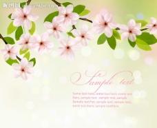 梦幻花卉花朵背景图片