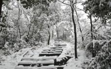 山中雪景图片