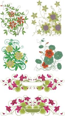 植物花卉花藤矢量图