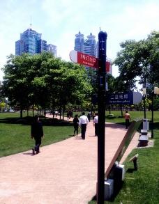 上海陆家嘴中心绿地图片
