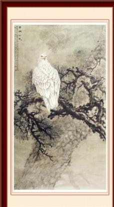 老鹰 工笔画图片