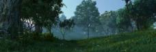 山野树林野外场景图片