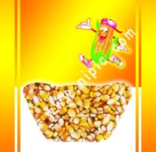 玉米糁图片