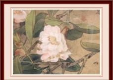 花卉 工笔画图片