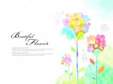 七彩的花朵