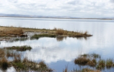 花湖沼泽图片