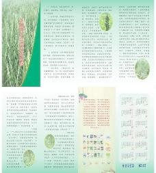 芝麻四折页联版图片