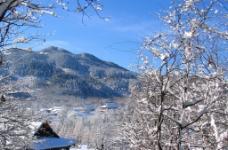 安徽 九华山冬雪图片