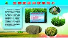 生物肥图版图片