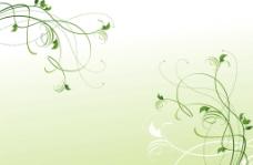 绿色花纹图片