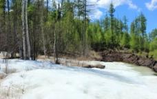 冰上森林图片