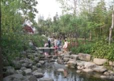 杨浦公园溪流图片