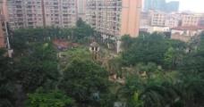 小区园景图片