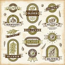 橄榄油标签矢量素材