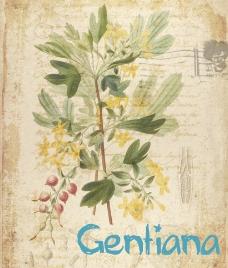 欧式复古水彩花卉图片