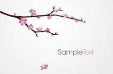 开花的樱桃树枝矢量素材