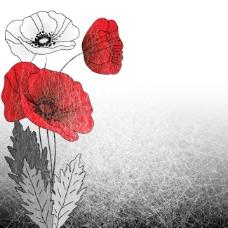 鼠绘花朵 唯美插画