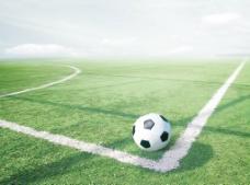 绿茵 足球场图片