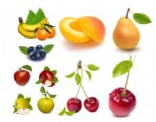 AI矢量绘制逼真的水果原料