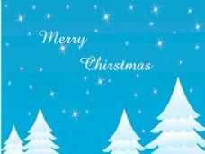 闪闪发光的圣诞树下