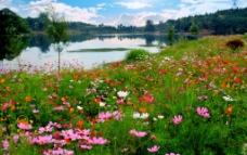 白马湖风景图片