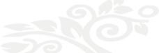 欧式花纹吉祥尊贵个性图片