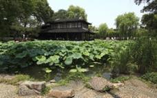 苏州拙政园图片
