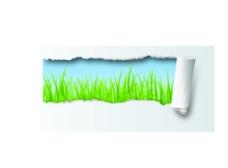 撕纸出现草地蓝天