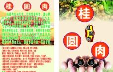 桂圆肉图片