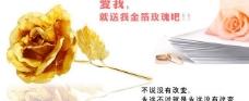 金箔玫瑰海报图片