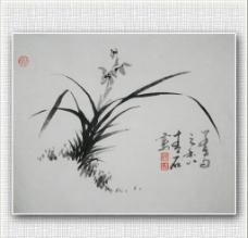 青石 国画 兰花图片