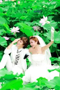 荷唐春色 婚纱样片图片