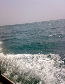 致身于大海中图片