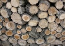 木材 木头图片